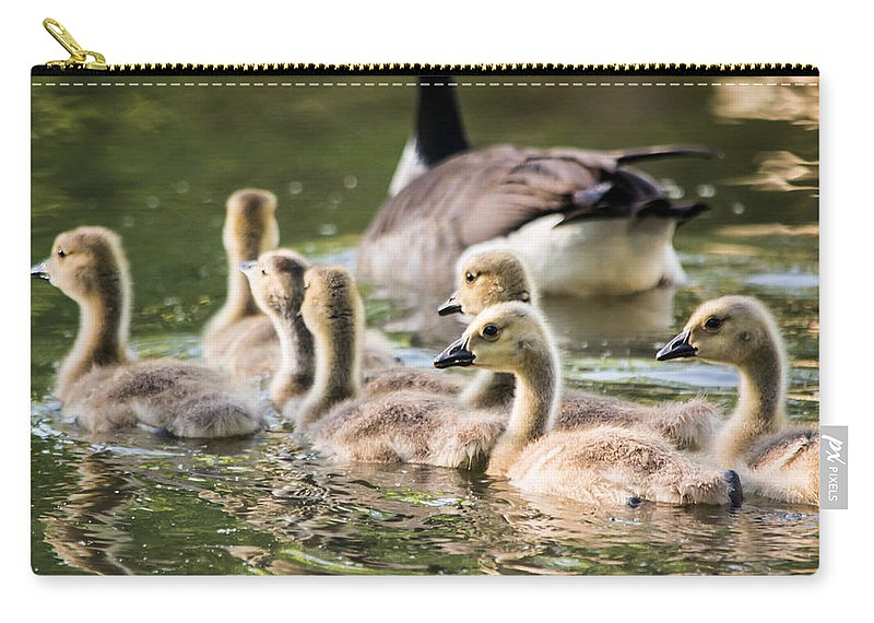 Geese Carry-all Pouch featuring the photograph Floating Along The Pond by Parker Cunningham