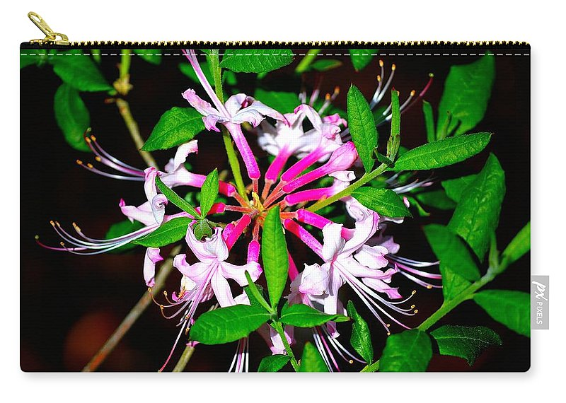 Cascade Carry-all Pouch featuring the photograph Flora In Pink by Tara Potts