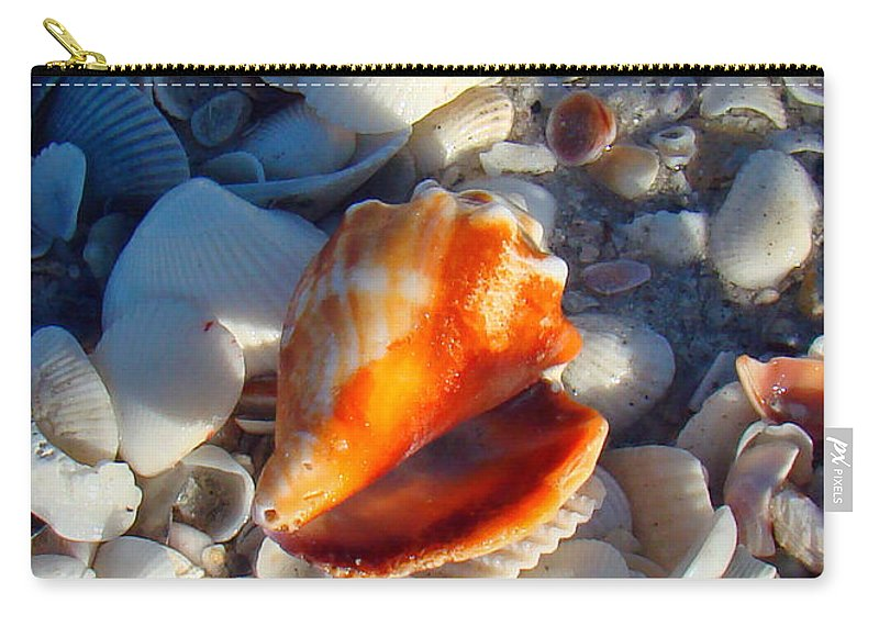Conch Carry-all Pouch featuring the photograph Florida Fighting Conch 1 by Nancy L Marshall