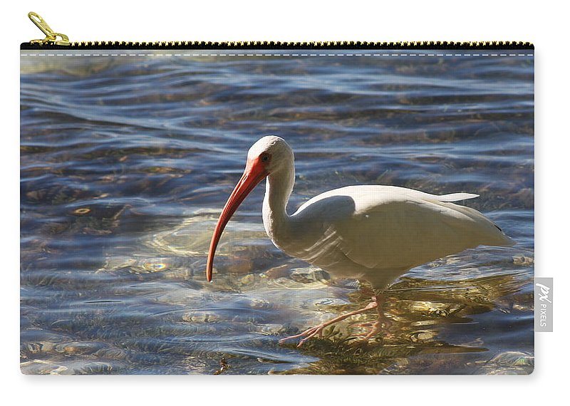 Ibis Carry-all Pouch featuring the photograph Florida Ibis by Christiane Schulze Art And Photography