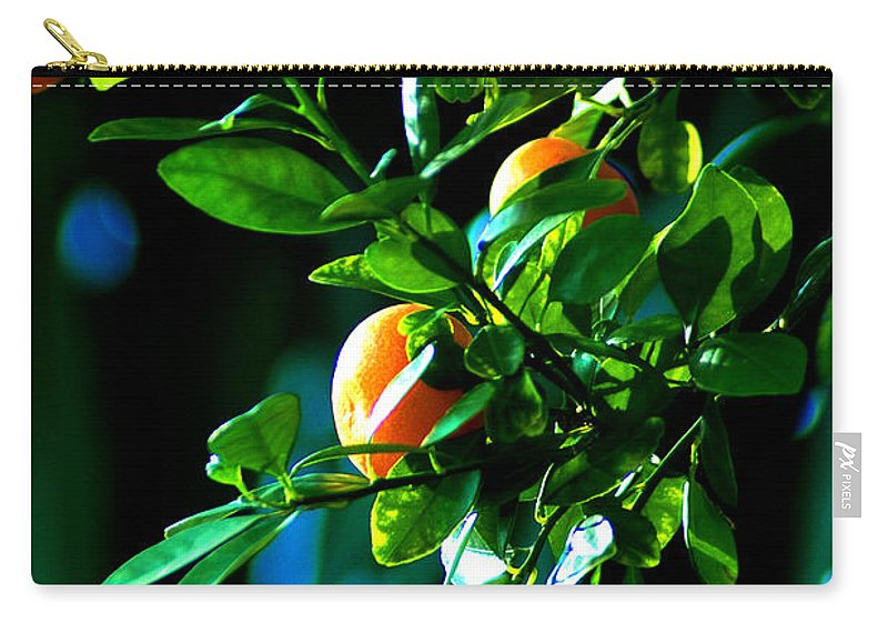 Florida Oranges Carry-all Pouch featuring the photograph Florida Oranges by Susanne Van Hulst