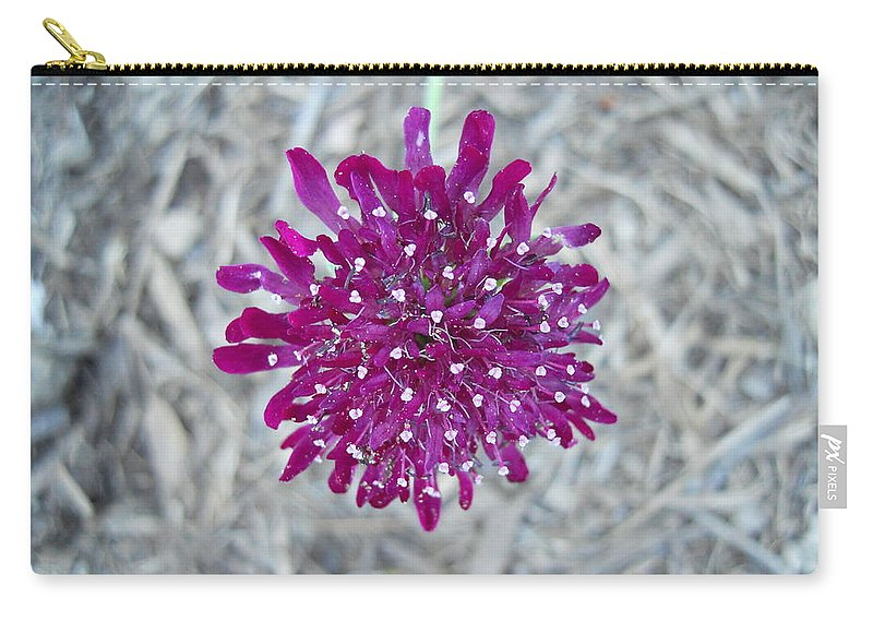 Flowers Carry-all Pouch featuring the photograph Flower 15 by Coleen Harty