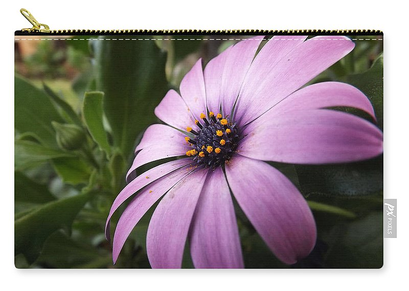 Flower Carry-all Pouch featuring the photograph Flower by Ana Cardenas