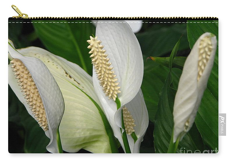 Art For The Wall...patzer Photography Carry-all Pouch featuring the photograph Flower Art by Greg Patzer
