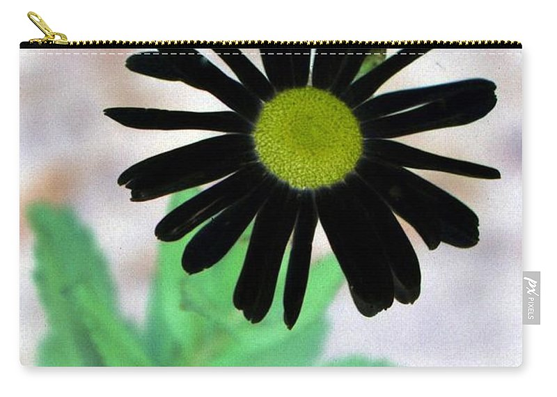 Flower Carry-all Pouch featuring the photograph Flower - Daisy - Photopower 327 by Pamela Critchlow