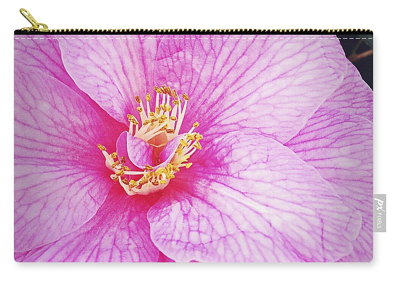 Flower Carry-all Pouch featuring the photograph Flower by Les Cunliffe