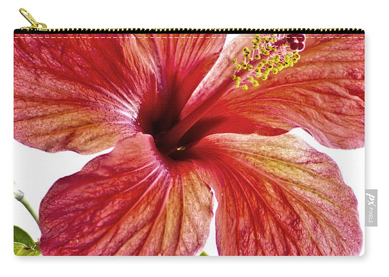 Closeup Carry-all Pouch featuring the photograph Flower by Paulo Goncalves