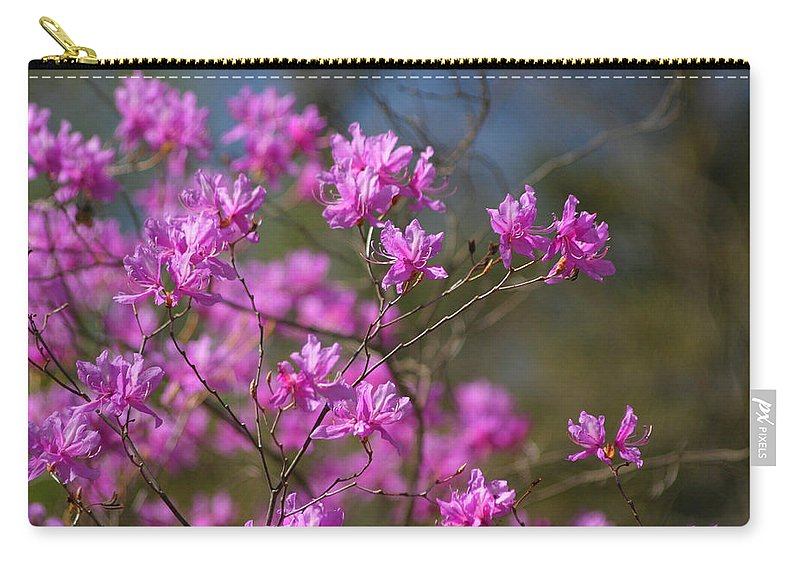 Rhododendrons Carry-all Pouch featuring the photograph Flower Power by Living Color Photography Lorraine Lynch