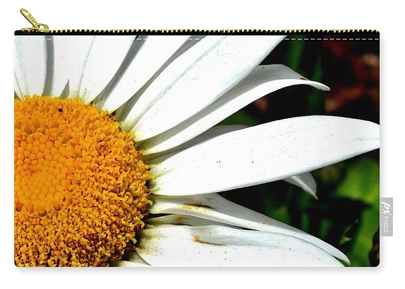 Daisy Carry-all Pouch featuring the photograph Flower Power by Susie Loechler