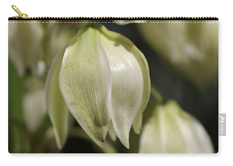 Flower Carry-all Pouch featuring the photograph Flower-yacca-bloom by Joy Watson