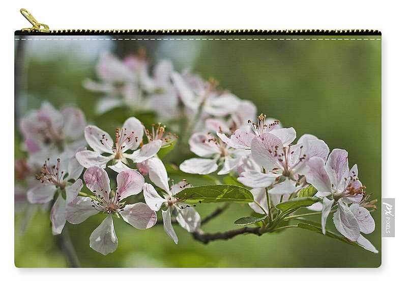 Crabapple Carry-all Pouch featuring the photograph Flowering Crabapple 2 by Scott Wood