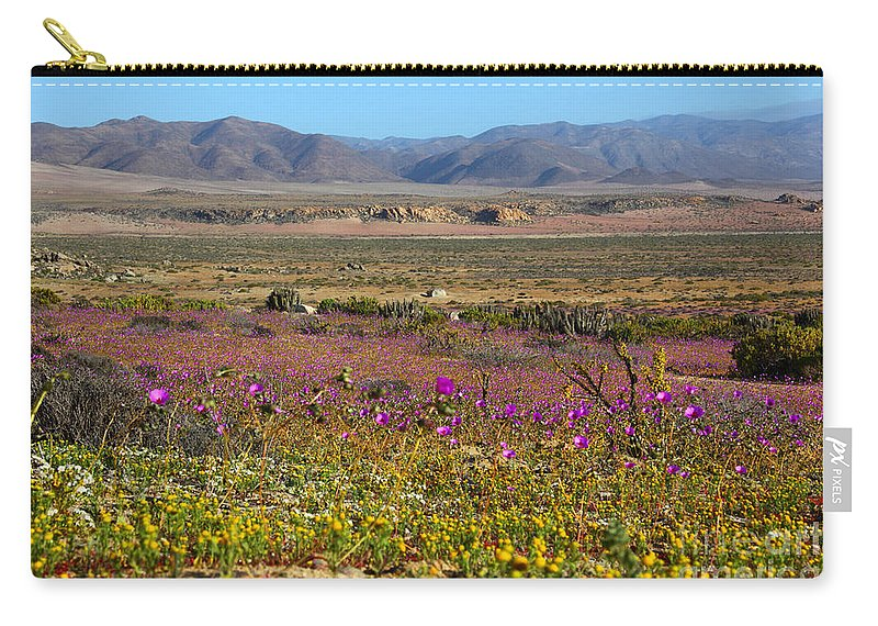 Chile Carry-all Pouch featuring the photograph Flowering Desert by James Brunker