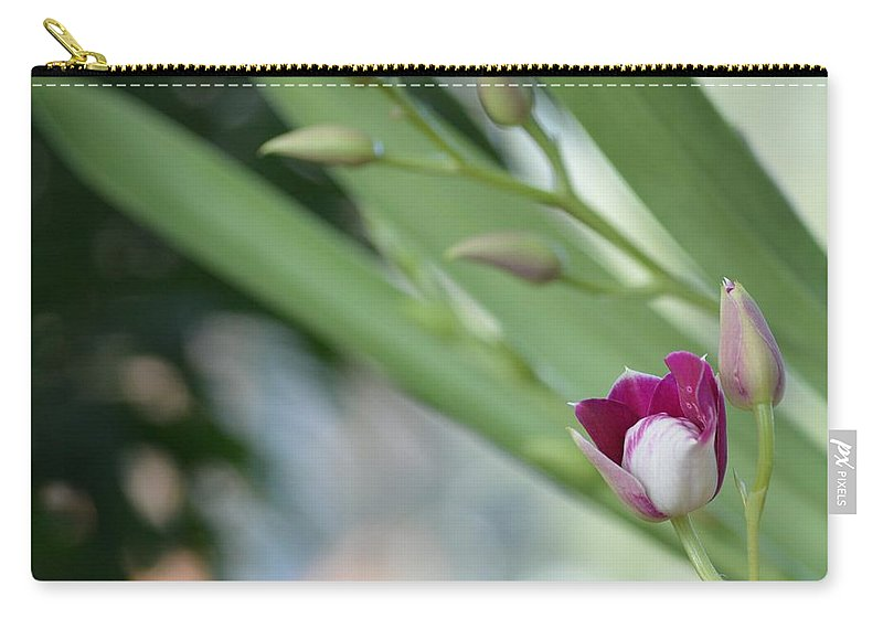 Pink Love Carry-all Pouch featuring the photograph Flowering Orchid Stem by Sonali Gangane