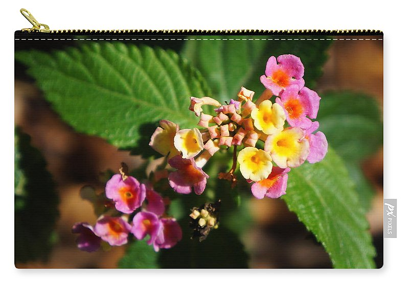 Ronald Chacon Carry-all Pouch featuring the photograph Flowers 1 by Ronald Chacon
