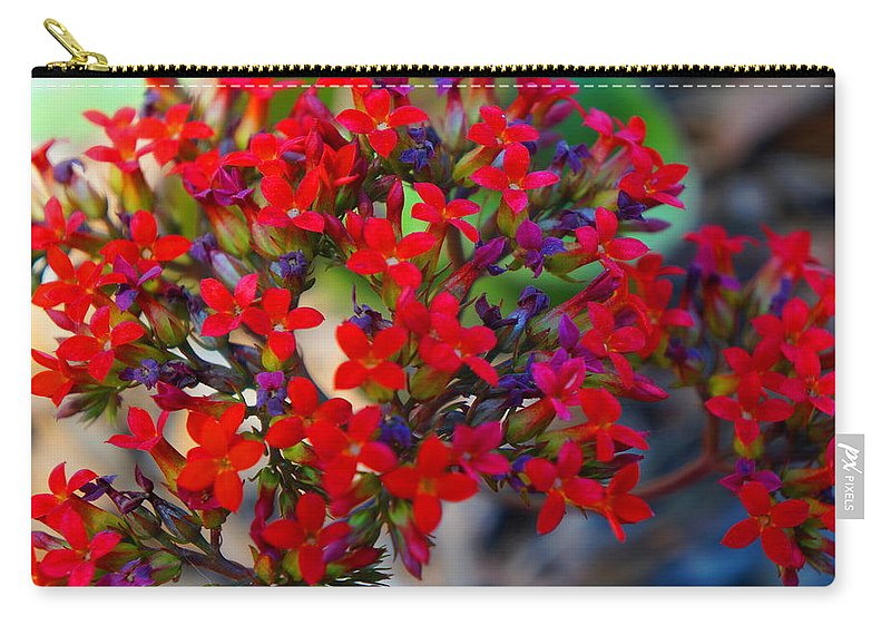 Ronald Chacon Carry-all Pouch featuring the photograph Flowers 3 by Ronald Chacon