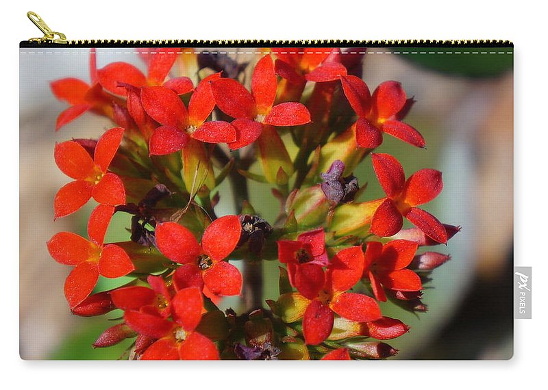 Ronald Chacon Carry-all Pouch featuring the photograph Flowers 4 by Ronald Chacon