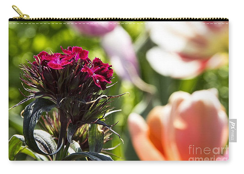 Tulips Carry-all Pouch featuring the photograph Flowers At Dallas Arboretum V13 by Douglas Barnard