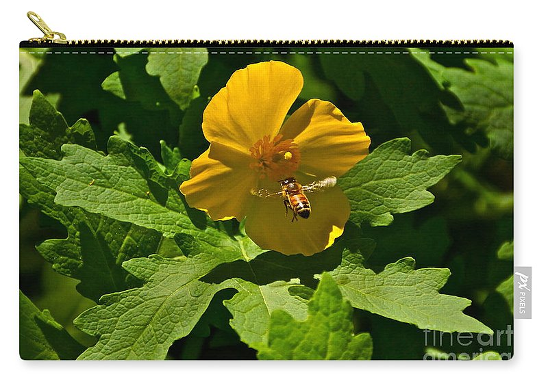 Wood Poppy Carry-all Pouch featuring the photograph Flying Bee And Wood Poppy by Byron Varvarigos