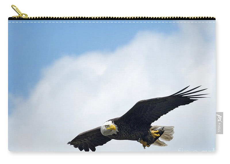 Eagles Carry-all Pouch featuring the photograph Flying Fish by Claudia Kuhn