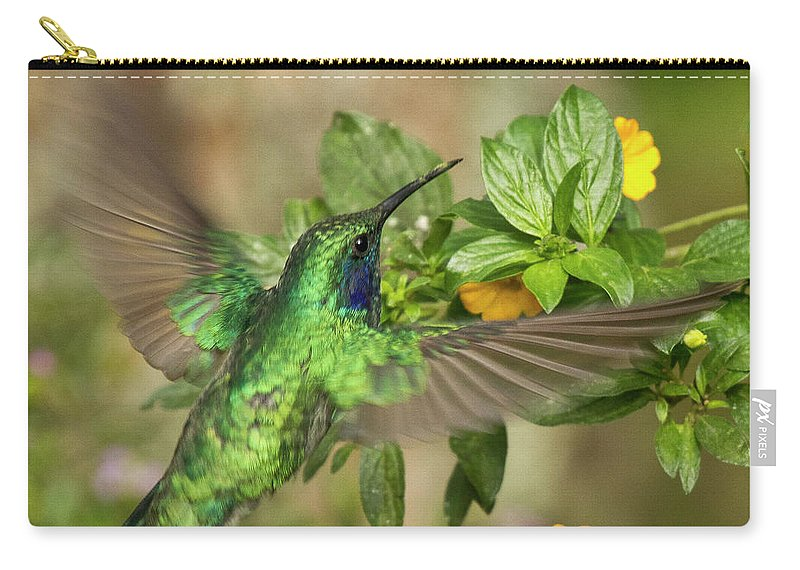 Bird Carry-all Pouch featuring the photograph Flying Green Violetear by Heiko Koehrer-Wagner