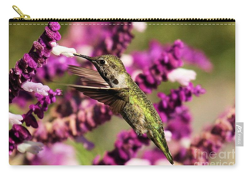 Point Reyes Carry-all Pouch featuring the photograph Flying In Lunch by Adam Jewell