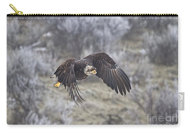 Eagle Carry-all Pouch featuring the photograph Flying Low by Mike Dawson