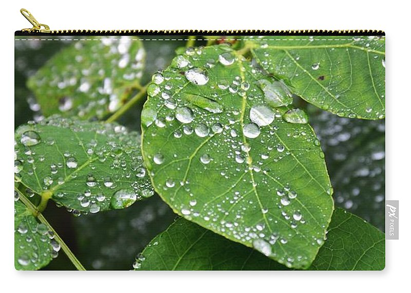 Dew Carry-all Pouch featuring the photograph Foliageworks 2 by Stephanie Guinn