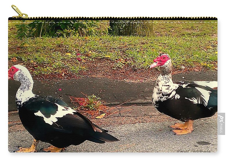 Nature Carry-all Pouch featuring the photograph Follow The Leader by Debra Forand