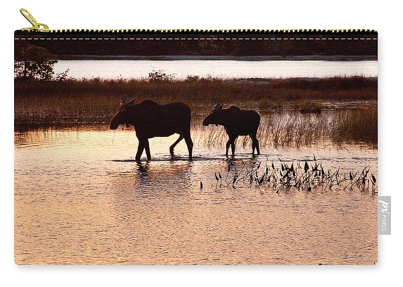 Sabao Carry-all Pouch featuring the photograph Following Mom by Brent L Ander