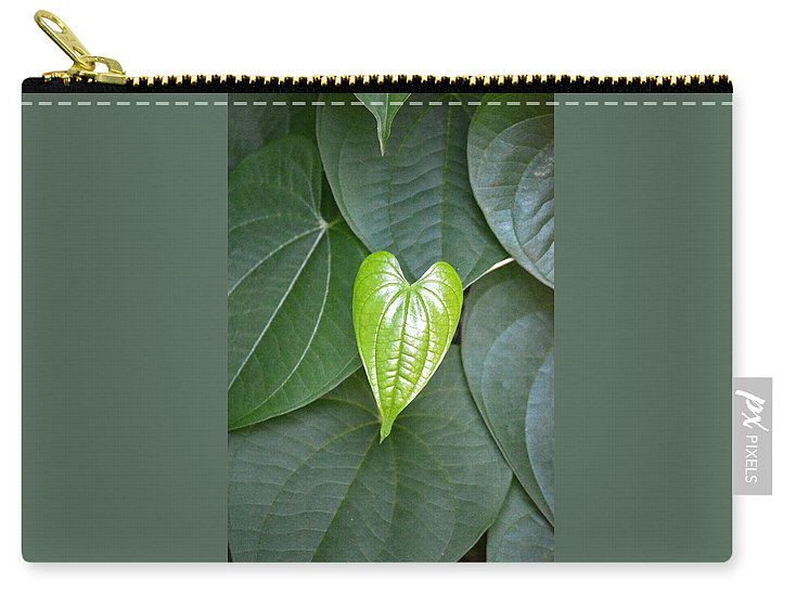 Leaf Carry-all Pouch featuring the photograph Everything Grows With Love by MLP Photography