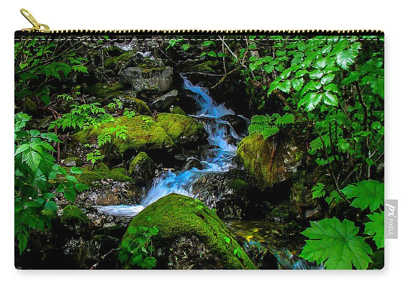 Stream Carry-all Pouch featuring the photograph Forest Creek by Robert Bales