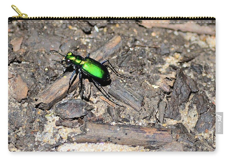 Insect Carry-all Pouch featuring the photograph Forest Floor Walker 7259 by Bonfire Photography