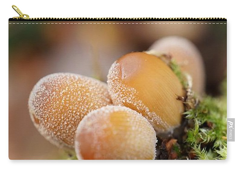 Mushroom Carry-all Pouch featuring the photograph Forest Mushrooms by MSVRVisual Rawshutterbug