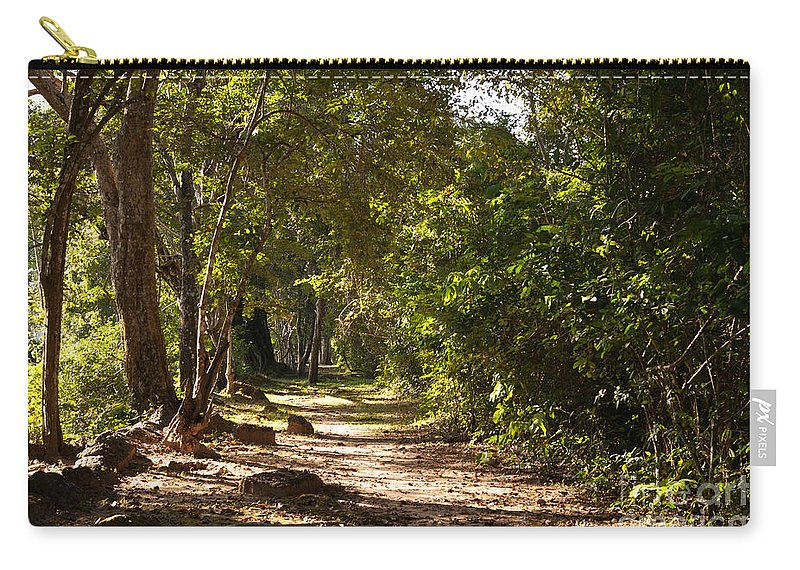 Forest Carry-all Pouch featuring the photograph Forest Walk 02 by Rick Piper Photography