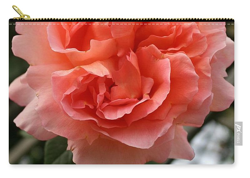 Rose Carry-all Pouch featuring the photograph Formidable Bloom by Christiane Schulze Art And Photography