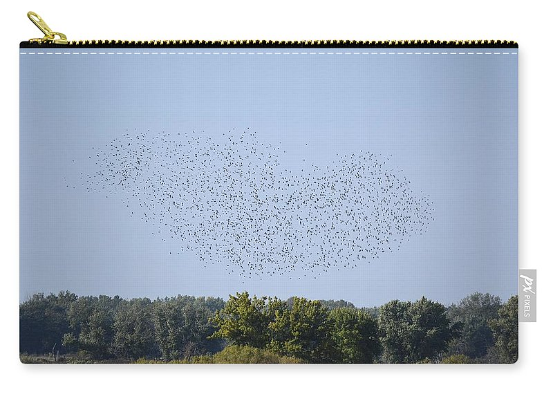 Birds Carry-all Pouch featuring the photograph Four And Twenty Blackbirds by Bonfire Photography