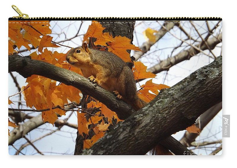 Squirrel Carry-all Pouch featuring the photograph Fox Squirrel In Autumn by Sara Raber