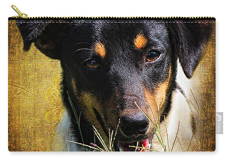 Carry-all Pouch featuring the photograph Fox Terrier Dog by Ronel Broderick
