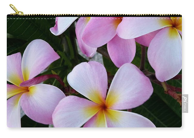 Color Carry-all Pouch featuring the photograph Frangipani by Amar Sheow