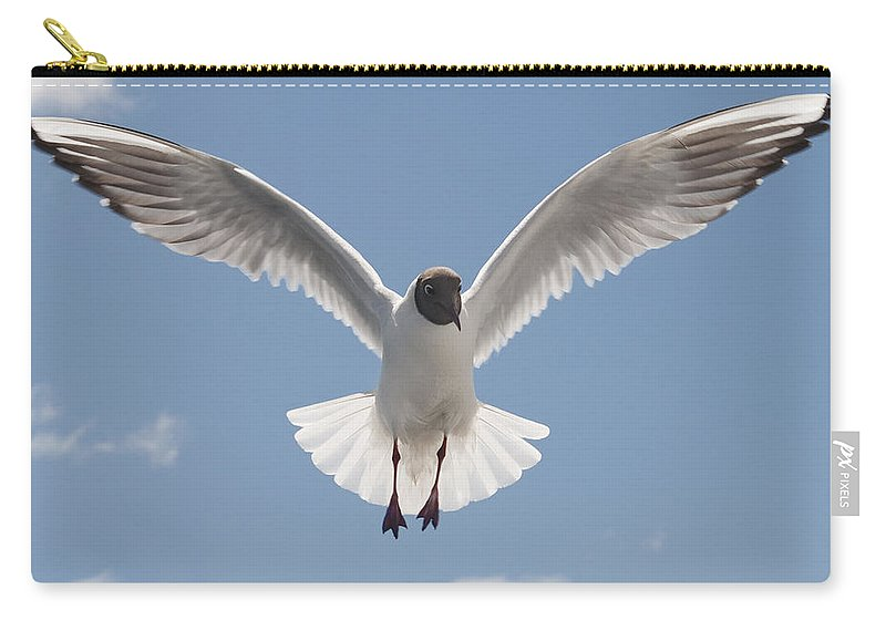 Festblues Carry-all Pouch featuring the photograph Freedom.. by Nina Stavlund