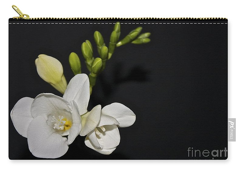 Freesia Carry-all Pouch featuring the photograph Freesia On Black by Linda Bianic
