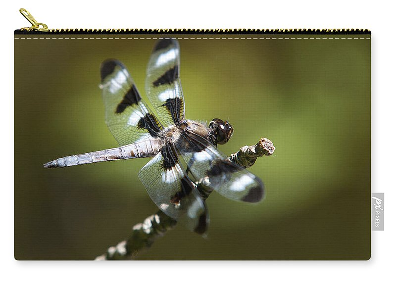 Dragonfly Carry-all Pouch featuring the photograph Fresh Morning Dragonfly by Christina Rollo