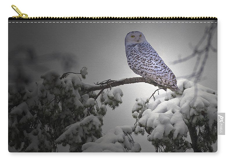 Snow Owl Carry-all Pouch featuring the photograph Fresh Snow by Rob Mclean