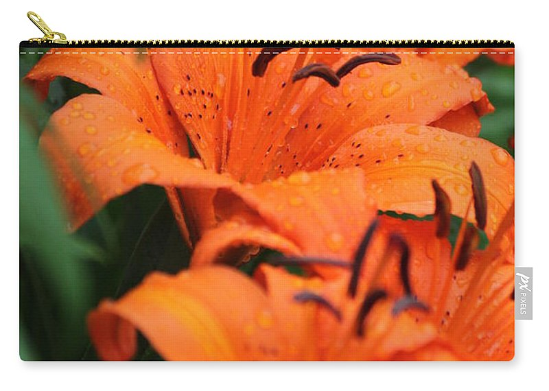 Orange Carry-all Pouch featuring the photograph Freshly Showered Tiger Lilys by Jennifer E Doll