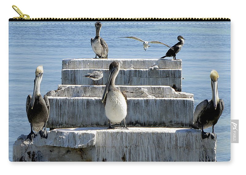 Pelican Carry-all Pouch featuring the photograph Pelican Friends by Bob Slitzan