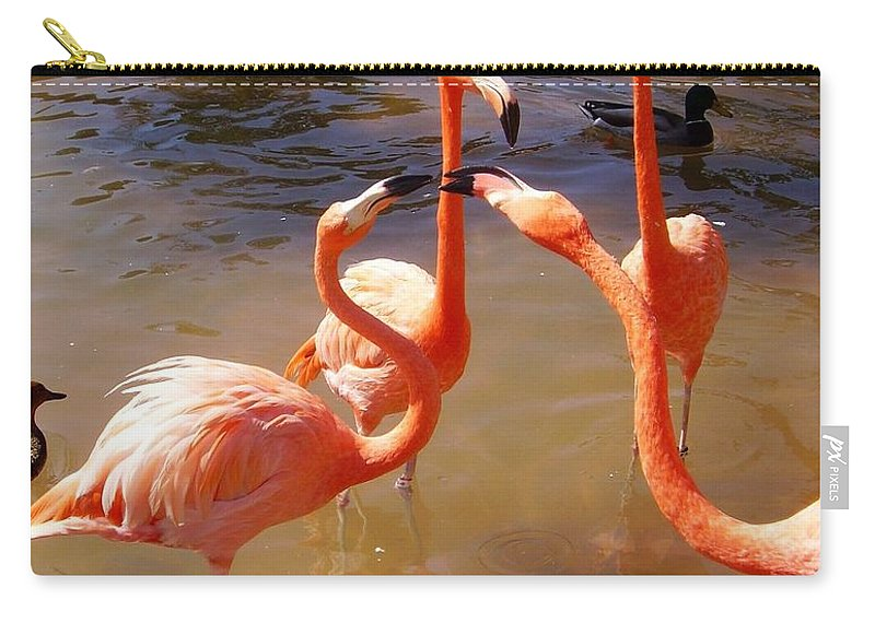 Flamingos Carry-all Pouch featuring the photograph Before Smart Phones by Scott French