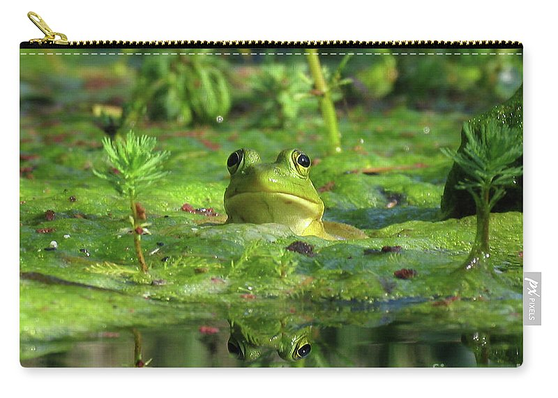 Frog Carry-all Pouch featuring the photograph Frog by Douglas Stucky