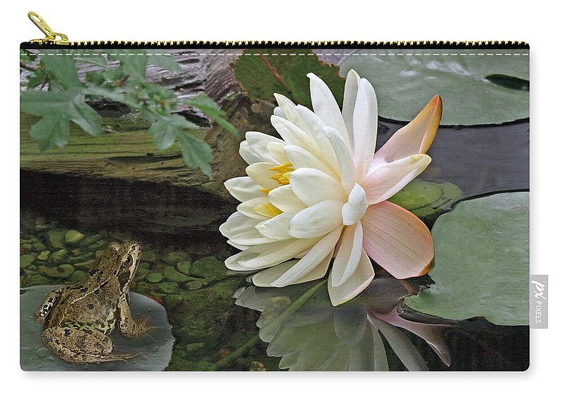 White Waterlily Carry-all Pouch featuring the photograph Frog In Awe Of White Water Lily by Gill Billington