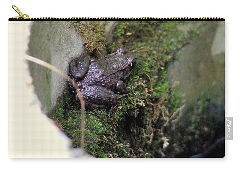 Frog Carry-all Pouch featuring the photograph Frog On Moss On Wall by Kenny Glotfelty