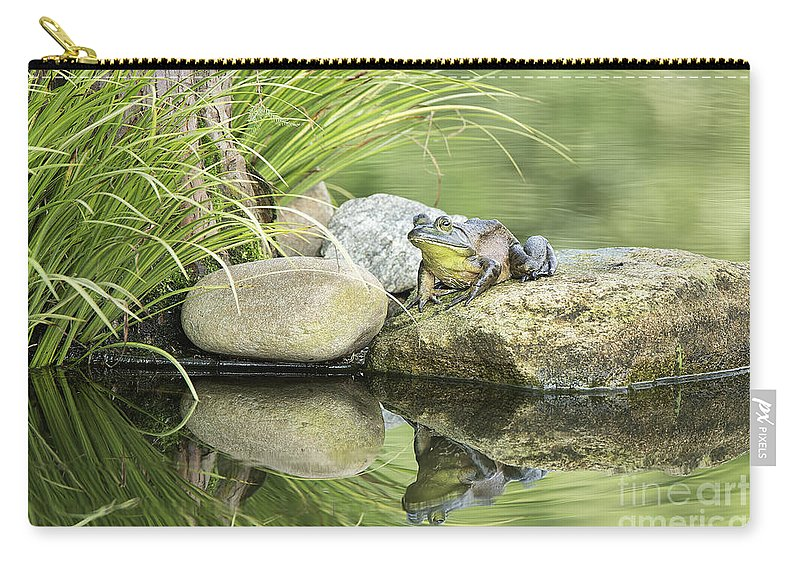 Reflection Carry-all Pouch featuring the photograph Bull Frog On A Rock by Linda D Lester